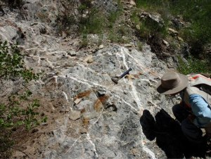 Stockwork in copper-molybdenum porphyry deposit in Mexico (credit: Sundance Minerals)