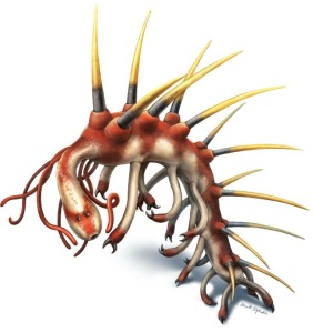 The latest reconstruction of Hallucigenia, by palaeontological illustrator Danielle Dufault (http://www.ddufault.com)