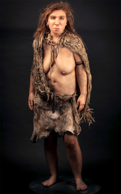 Artistic reconstruction of Neanderthal woman (credit: Natural History Museum, http://www.nhm.ac.uk/natureplus/blogs/tags/human_evolution)